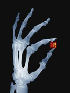Skeletal Hand Holding Computer Chip by Charles O'Rear