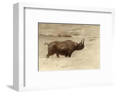 A Painting of a Woolly Rhinoceros Tichorhinus of the Pleistocene Age