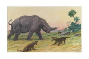 Bony Growths on the Arsinoitherium Protect it Against Hyaenodons by Charles R. Knight