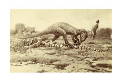Painting of Two Tyrannosaurs Rex; One Eats Brontosaurus Remains