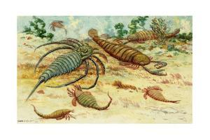 Prehistoric Eurypterids are Similar to Today's Horseshoe Crabs by Charles R. Knight