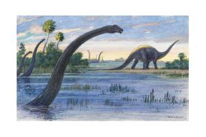 The Diplodocus Could Grow Up to Seventy-Five Feet Long by Charles R. Knight