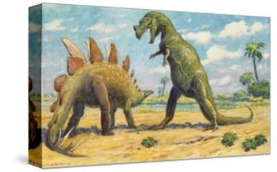 The Stegosaurus Has Armor to Protect it from the Ceratosaurus