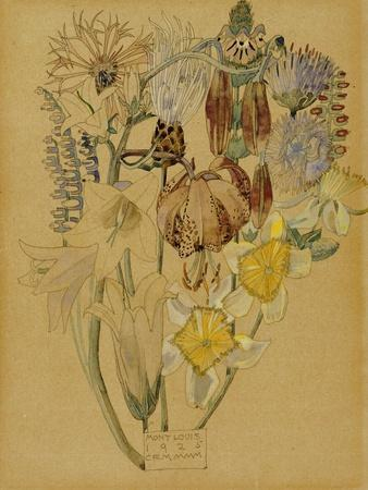 Mont Louis, Flower Study, 1925