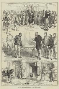 The War, Sketches at Belgrade by Charles Robinson