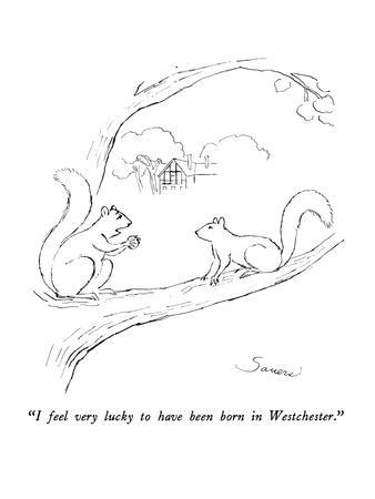 """""""I feel very lucky to have been born in Westchester."""" - New Yorker Cartoon"""