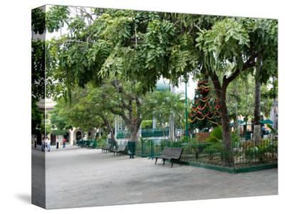 Christmastime at The Plazuela Machado in the Historic Center, Mazatlan, Mexico