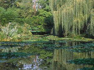 Claude Monet's Garden Pond in Giverny, France by Charles Sleicher