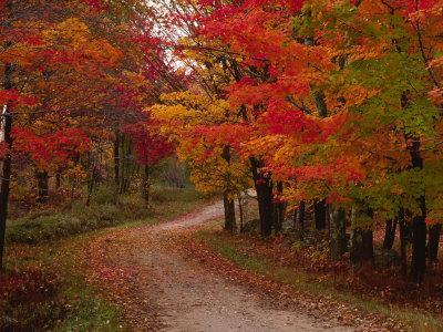 Country Road in the Fall, Vermont, USA