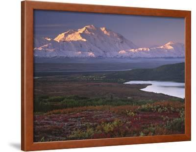 Denali National Park near Wonder Lake, Alaska, USA