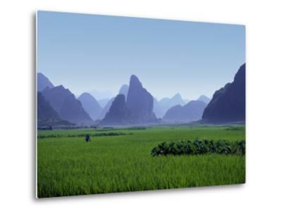 Farmland with the Famous Limestone Mountains of Guilin, Guangxi Province, China