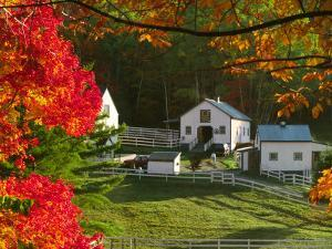 Morning Chores at the Imagination Morgan Horse Farm, Bethel, Vermont, USA by Charles Sleicher