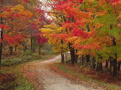 Vermont Country Road in Fall, USA
