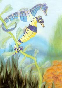 Seahorse Serenade III by Charles Swinford