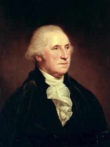 Portrait of George Washington, 1795 by Charles Willson Peale