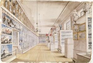 The Long Room, Interior of Front Room in Peale's Museum, 1822 (W/C over Graphite on Paper) by Charles Willson Peale