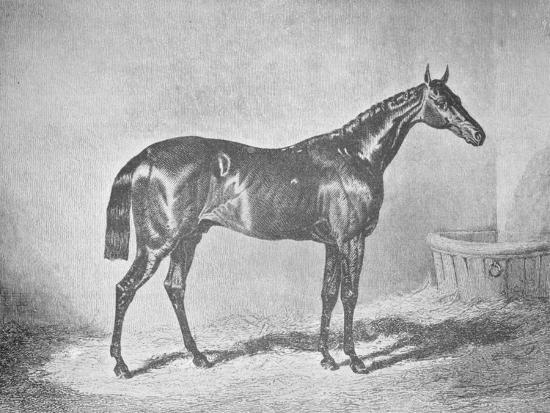'Charles XII, Winner of the St. Leger' 1839, (1911)-Unknown-Giclee Print