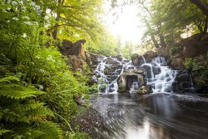 The Cascades, Virginia Water, Surrey, England, Uk, Europe by Charlie Harding