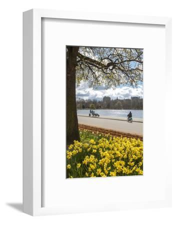 Visitors Walking Along the Serpentine with Daffodils in the Foreground, Hyde Park, London, England