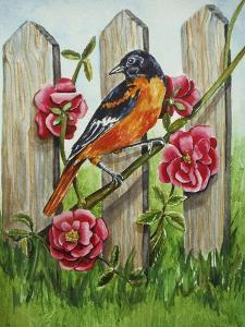 Oriole by Charlsie Kelly
