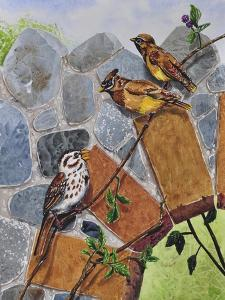 Song Sparrow and Cedar Waxwings by Charlsie Kelly
