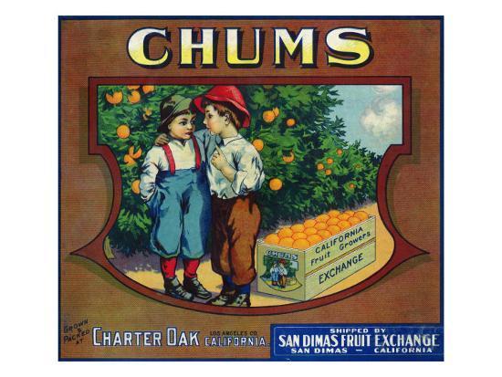 Charter Oak, California, Chums Brand Citrus Label-Lantern Press-Art Print