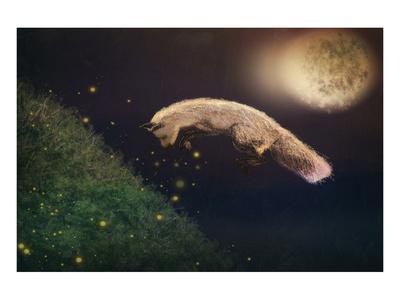 https://imgc.artprintimages.com/img/print/chasing-fireflies_u-l-f8ms1e0.jpg?p=0