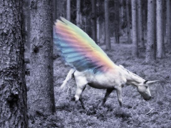 Chasing The Unicorn-Emanuela Carratoni-Art Print
