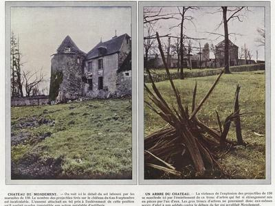 https://imgc.artprintimages.com/img/print/chateau-de-mondement-un-arbre-du-chateau_u-l-ppq8ux0.jpg?p=0