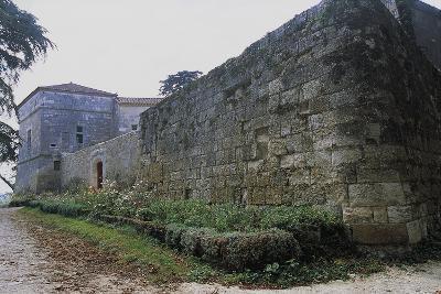Chateau of Monluc, Estillac, Aquitaine, France--Photographic Print