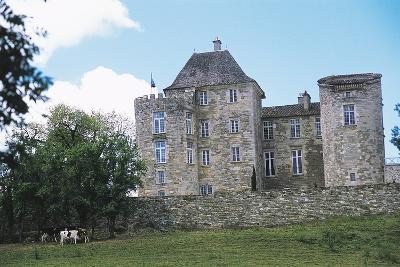 Chateau of Saint Projet, Midi-Pyrenees, France--Photographic Print
