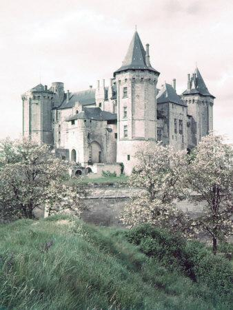 https://imgc.artprintimages.com/img/print/chateaux-of-loire-valley-france_u-l-p68t7w0.jpg?p=0