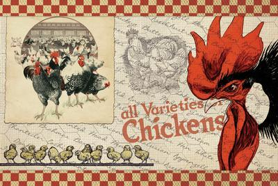 Checkered Chicken 6--Giclee Print