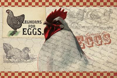Checkered Chicken 7--Giclee Print