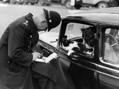Checking Licences--Photographic Print