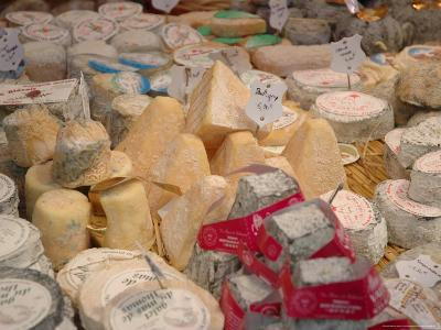 Cheese Variety in Shop, Paris, France-Lisa S^ Engelbrecht-Photographic Print