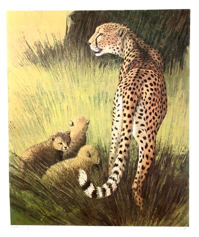 Cheetah Family Masai Mara-Caroline Schultz-Collectable Print