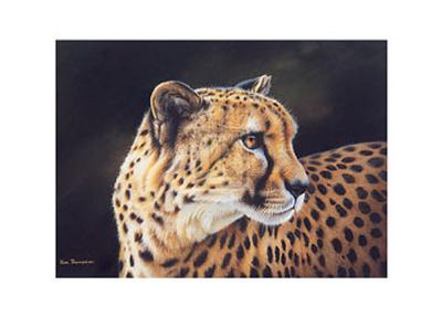 Cheetah-Kim Thompson-Art Print