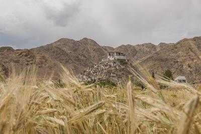 Chemde Monastery, near Karu-Guido Cozzi-Photographic Print