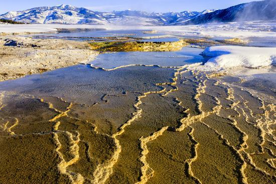 Chemical Sediments. Yellowstone National Park, Wyoming.-Tom Norring-Premium Photographic Print