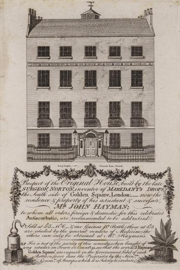 Chemists and Druggists, Mr John Hayman, Trade Card--Giclee Print