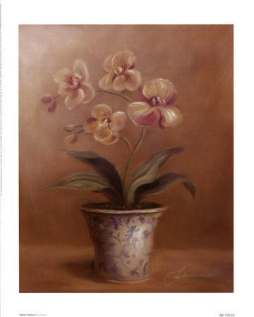 Olivia's Flowers I