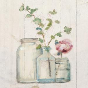 Blossoms on Birch IV by Cheri Blum