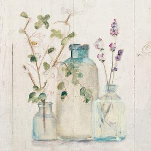 Blossoms on Birch V by Cheri Blum