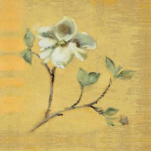 Dogwood Blossom on Gold by Cheri Blum