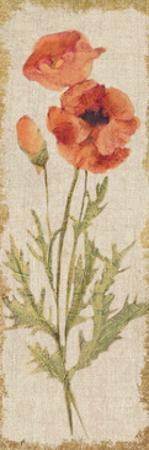 Poppy Panel on White Vintage by Cheri Blum