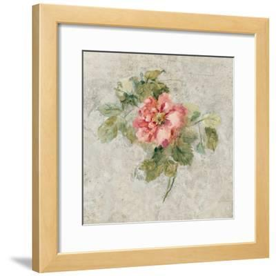 Provence Rose II Red and Neutral