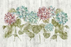 Vibrant Row of Hydrangea on Wood by Cheri Blum
