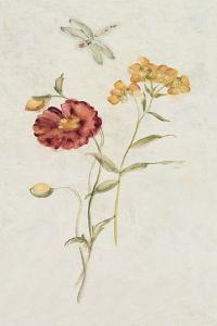 Wild Wallflowers IV by Cheri Blum