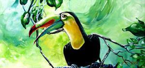 Macaw by Cherie Roe Dirksen